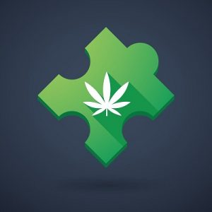 Medical Marijuana Program Community