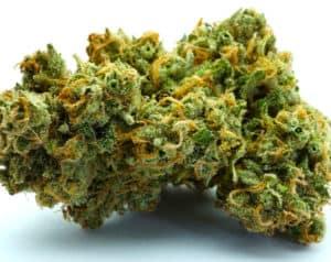 Recreational Marijuana Industry