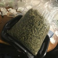 Buy marijuana online Kush online for Sale Mail Order Weed Buy weed...