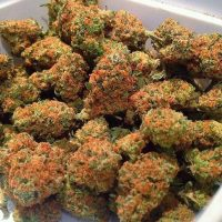 Good medical cannabis top shelf available by vendor